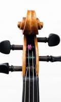 Violine Herwig - Schnecke-vorn