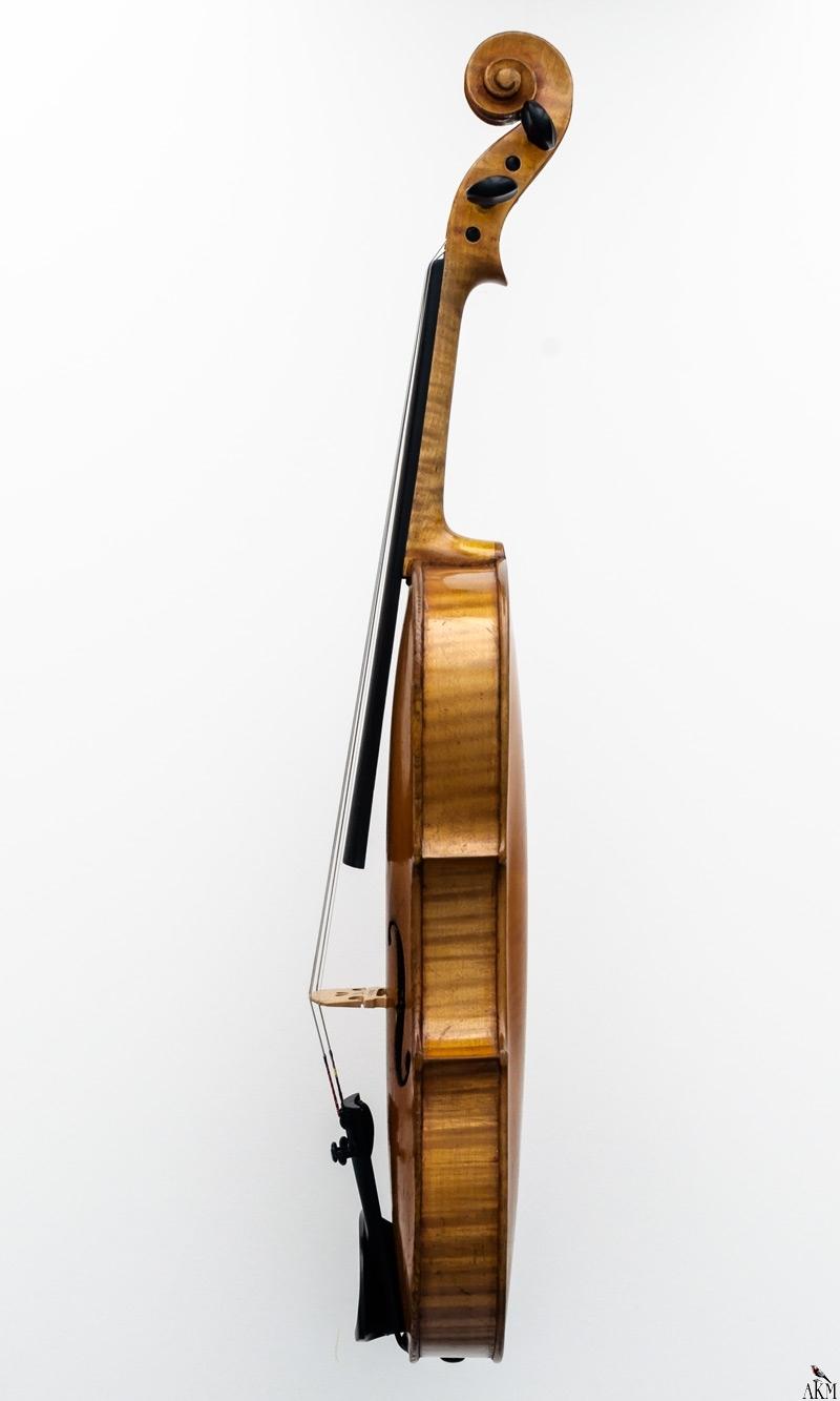Violine Herwig - rechts