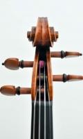 violine_n_guanieri_2014_1 (11 von 13)