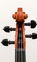 violine_n_amati_meinelgeigen_2005 (9 von 16)