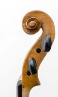 violine_n_calace_r22_rest (10 von 18)