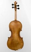 violine_n_calace_r22_rest (5 von 18)