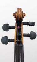violine_hopf,restau_r14 (8 von 11)
