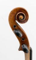 Schnecke seitlich 1 Violine R124