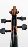 Schnecke vorn Violine R124