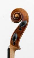 Schnecke seitlich 2 Violine R124